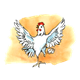 White Chicken standing on one leg, has background