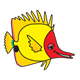 Yellow Fish with red face, without bubbles