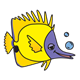 Yellow Fish with purple face and bubbles