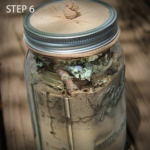 Mason Jar Ant Farm