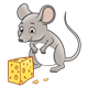 Gray Mouse looking at cheese