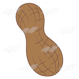 Brown Peanut