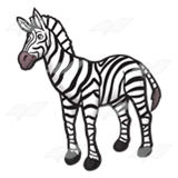 Striped Zebra