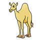 Yellow Camel facing left