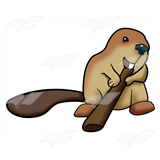 Beaver Gnawing Stick