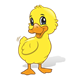 Yellow Duck smiling