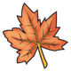 Maple Leaf orange