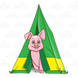 Pig in Tent