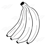 Bunch of Bananas 1