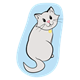 Gray Cat with a light blue background