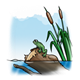 Frog on a Log with cattails