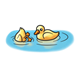 Two Ducklings one with head in water