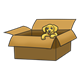 Golden Puppy in a box