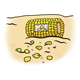 Pecked Corn on the Cob on ground