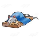 Sleeping Mouse
