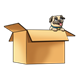 Pug Puppy in Box looking out