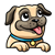 Pug Puppy Looking Out Color PNG