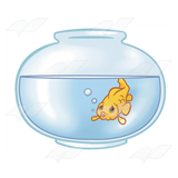 Goldfish in Fishbowl