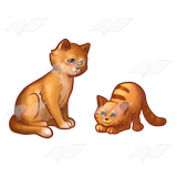 Copper Cats