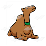 Camel with Green Collar