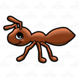 Little Brown Ant