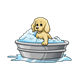 Puppy Taking Bath in washtub