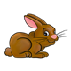 Mischievous Brown Rabbit