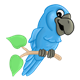 Happy Blue Parrot sitting on branch