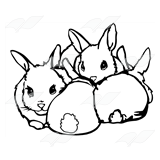 Group of Rabbit Kits