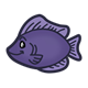 Purple Fish under the sea