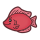 Red Fish under the sea