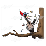 Singing Woodpecker