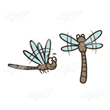 Two Brown Dragonflies