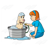 Girl Washing Dog