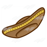 Brown Sombrero