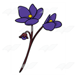 Long-Stemmed Purple Flowers