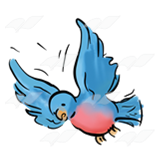 Flying Bluebird 2