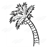 Bent Palm Tree