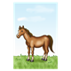 Brown Horse on green grass with sky