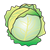 Cabbage Head Color PNG