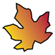 Maple Leaf with orange and yellow coloring