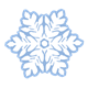 White Snowflake with flower design