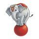 Circus Elephant balancing on a red ball