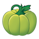 Green Pumpkin with stem