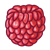 Whole Raspberry Color PNG