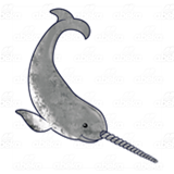 Gray Narwhal