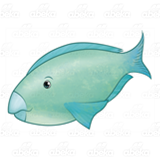 Blue-Green Parrotfish
