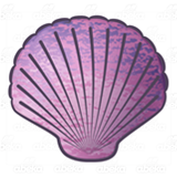 Purple Scalloped Shell