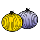 Two Onions yellow and purple