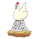 White Chicken sitting on egg pile in nest
